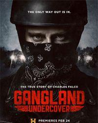 Affiche de la série Gangland Undercover