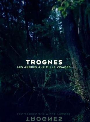 Trognes, les arbres aux milles visages