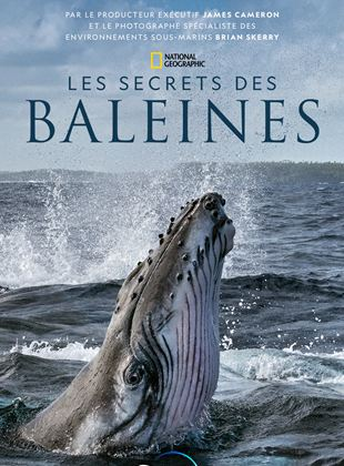 Les Secrets des baleines