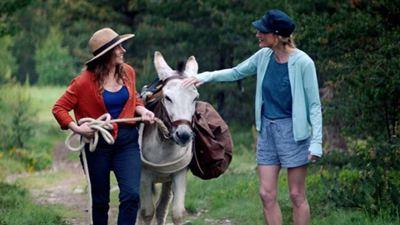 Box office France : Antoinette dans les Cévennes créé la surprise