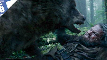 Le Top 5 des combats contre un ours