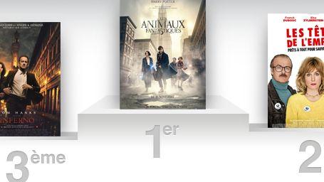 Box-office France : Les Animaux Fantastiques fait le 4e meilleur démarrage de 2016 !