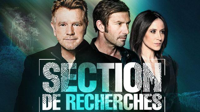 Section de recherches : la série de TF1 s'arrête après 14 saisons
