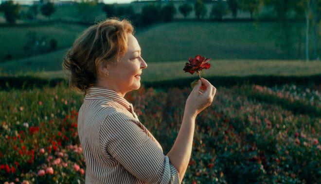 Photo du film La Fine fleur