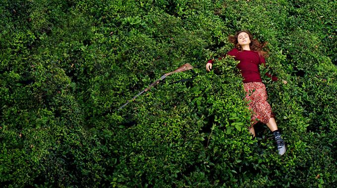 Photo du film Sibel