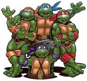 Affiche de la série The Teenage mutant ninja turtles 2003