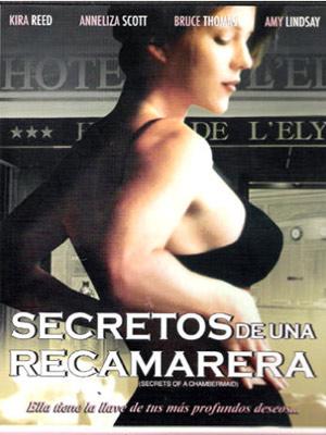 Télécharger Les Secrets d'une femme de chambre Gratuit DVDRIP