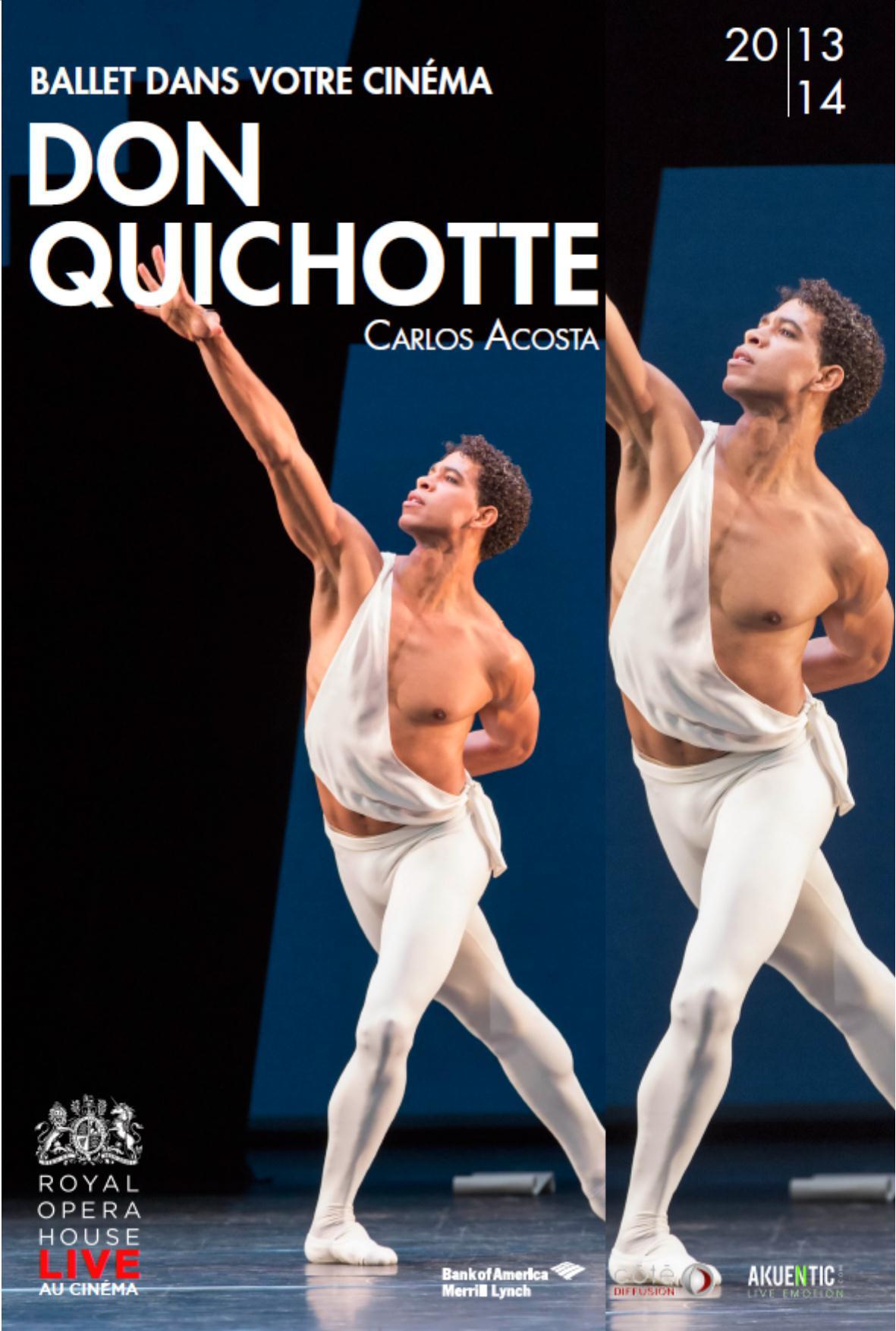 Télécharger Don Quichotte (Côté Diffusion) Complet DVDRIP Uptobox