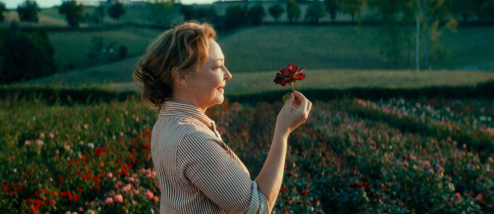 Photo du film La Fine fleur - Photo 1 sur 16 - AlloCiné