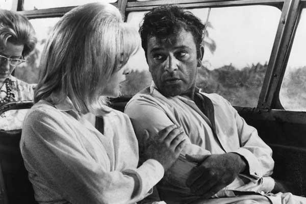 La Nuit de l'iguane : Photo John Huston, Richard Burton, Sue Lyon