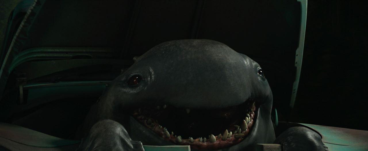 Monster Cars : Photo