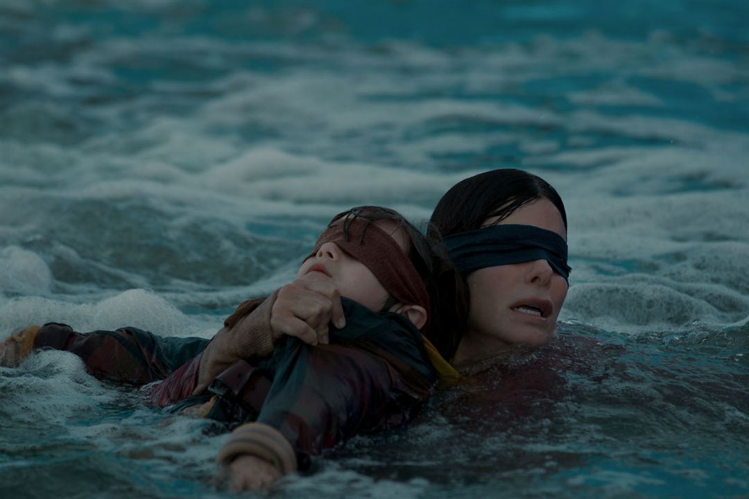 Bird Box : Photo Sandra Bullock
