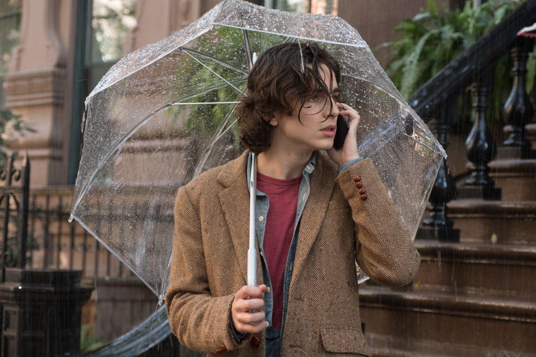 Un jour de pluie à New York : Photo Timothée Chalamet