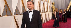 Oscars 2016 : Leo, Kate, Brie Larson, Cate Blanchett... Les meilleures photos du tapis rouge